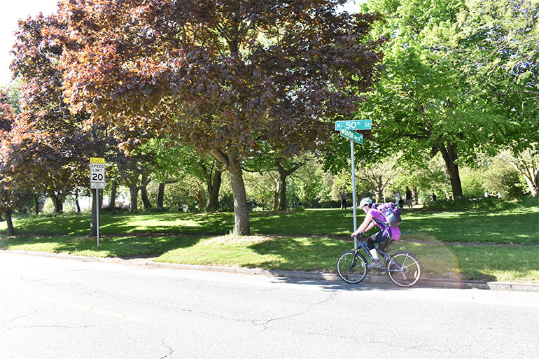 A person commutes home from work via bike along N 50th St on a sunny day.