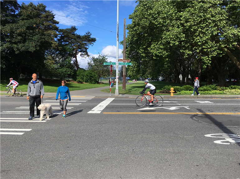 A couple walks their dog at the intersection of Green Lake Dr, NE 71st, and NE Ravenna Blvd. Two people are riding bikes. It's a sunny day.